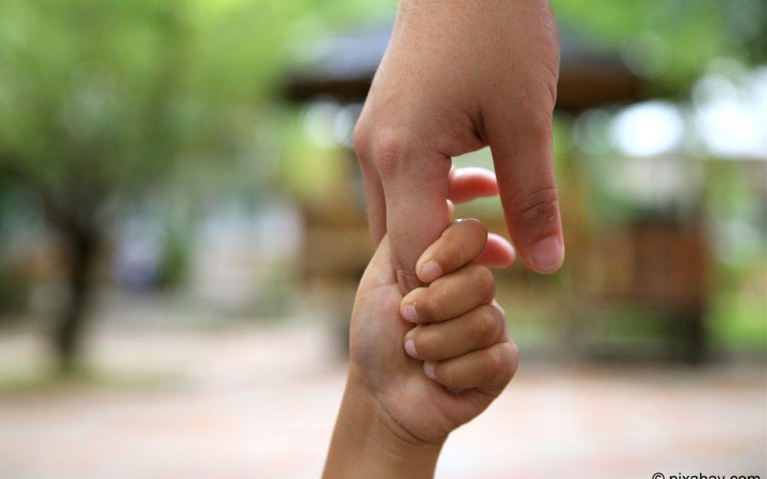 Sicher verankert – frühkindliche Bindung im Fokus
